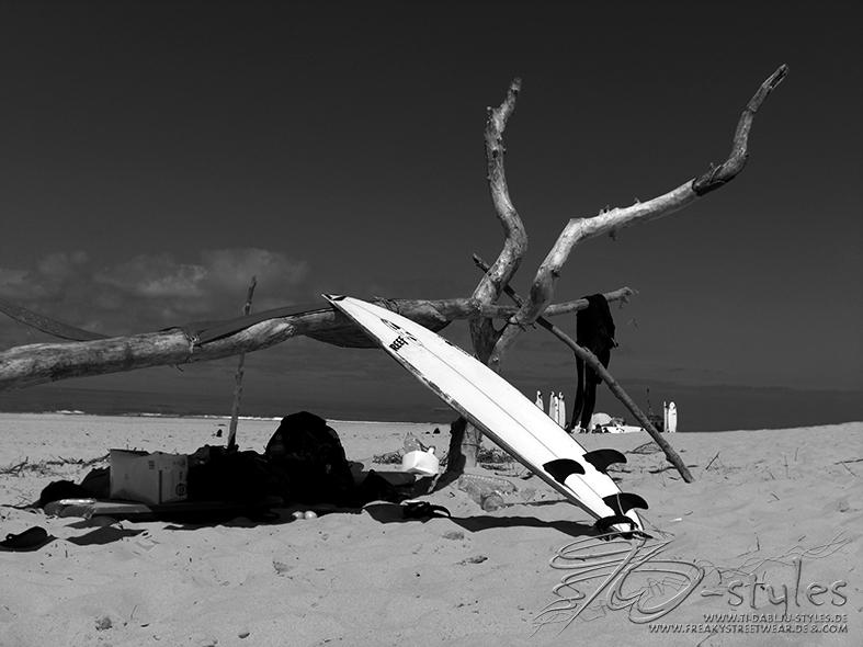 317surfing