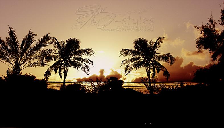395paradise sundown2